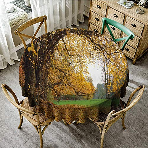Round Tablecloth Fall Autumnal Park with Big Ancient Oak Tree and Deciduous Leaves Greenery Picnic D67 Earth Yellow Brown Green