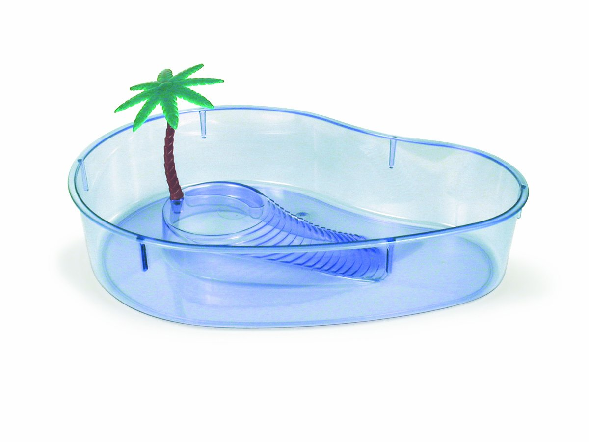 Lee's Turtle Lagoon, Kidney w/ Plant, 14-Inch by 10-1/8-Inch by 3-Inch by Lee's