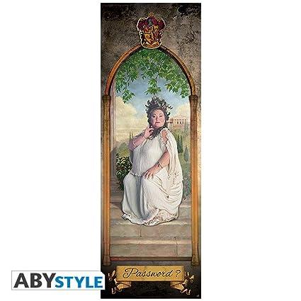 HARRY POTTER - Door Poster - The Fat Lady (53x158) cm  sc 1 st  Amazon.com & Amazon.com: HARRY POTTER - Door Poster - The Fat Lady (53x158) cm ...