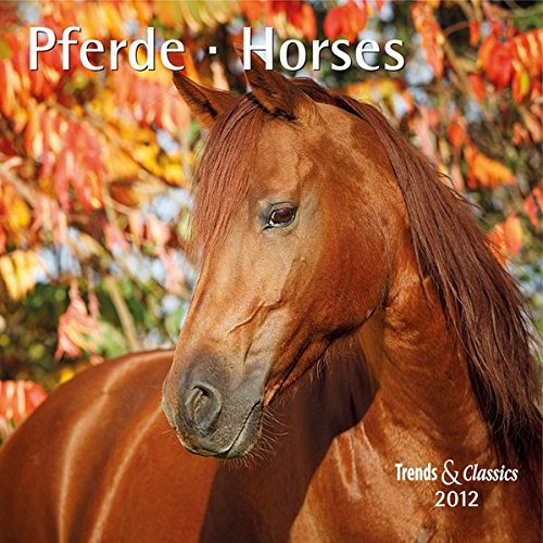 Pferde - T & C-Kalender 2012