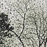 zen rain oil - Pure Zen