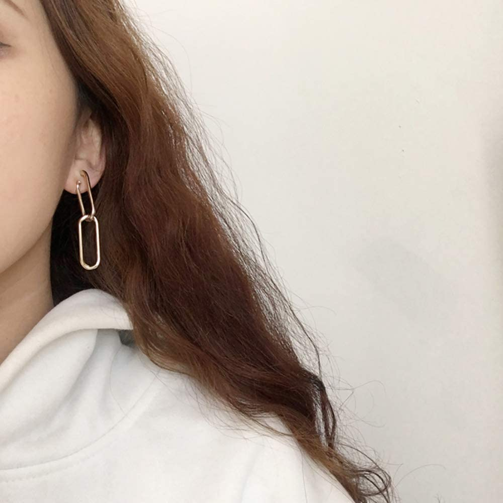 TIDOO Jewelry Womens Acrylic Dangle Earring Spiral Leopard Print Earring for Girls
