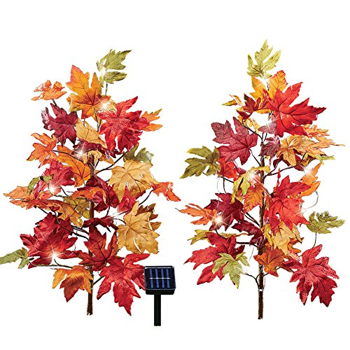 Solar Lighted Lawn Ornaments in US - 3