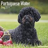Portuguese Calendars