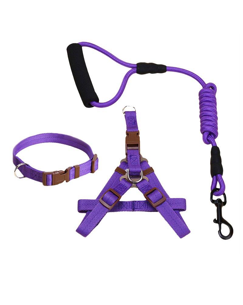 Correa para perros en cuerda de escalada de montaña hecha de ...