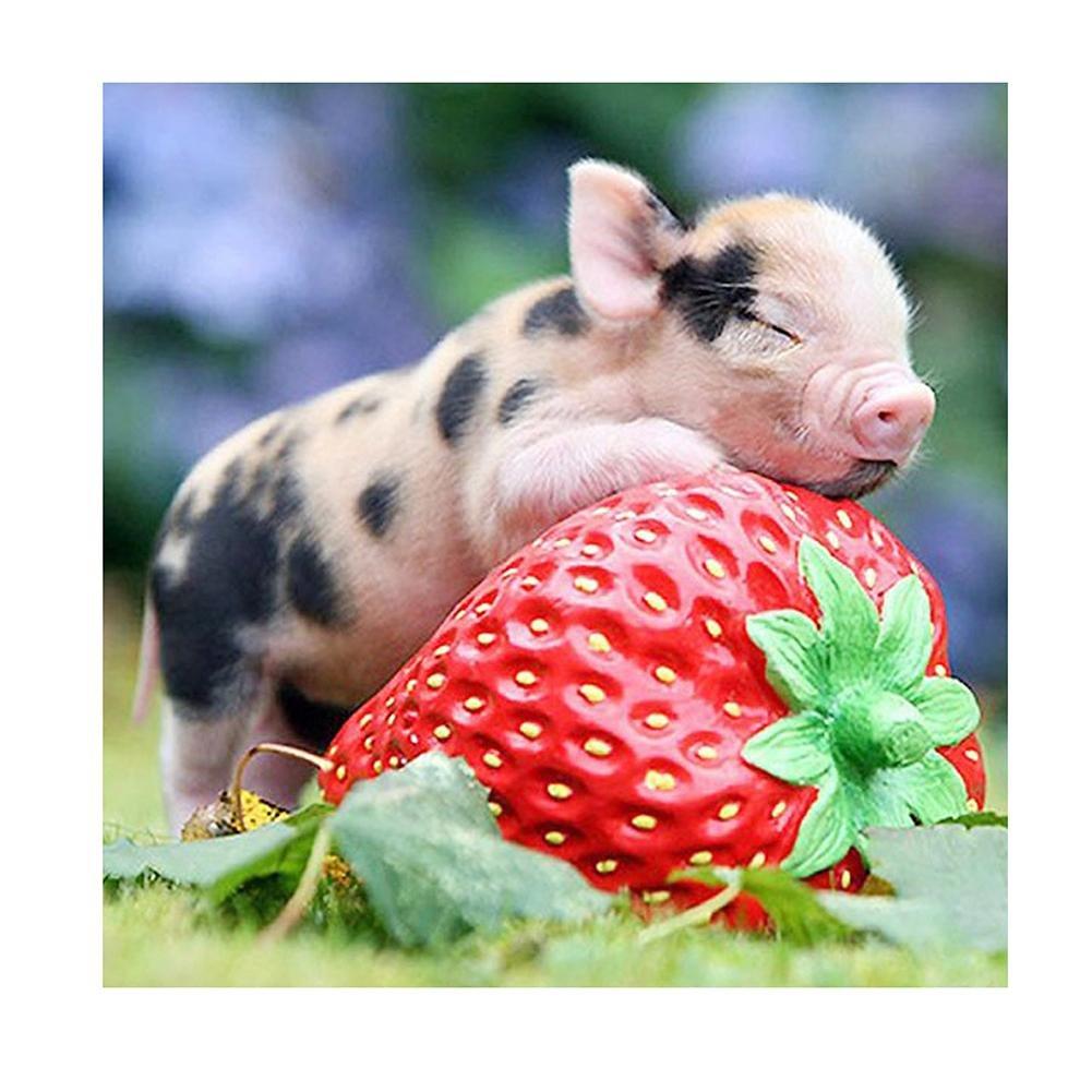 WinnerEco Diamond Painting Baby Pig Sleep on Strawberry Cross Stitch Embroidery Decor