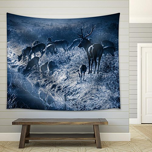 Deer Standing on the Frozen Meadow near the River at Moonlight Fabric Wall Tapestry