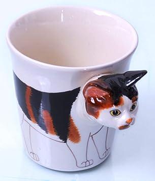 Noir chatte blanc garçon