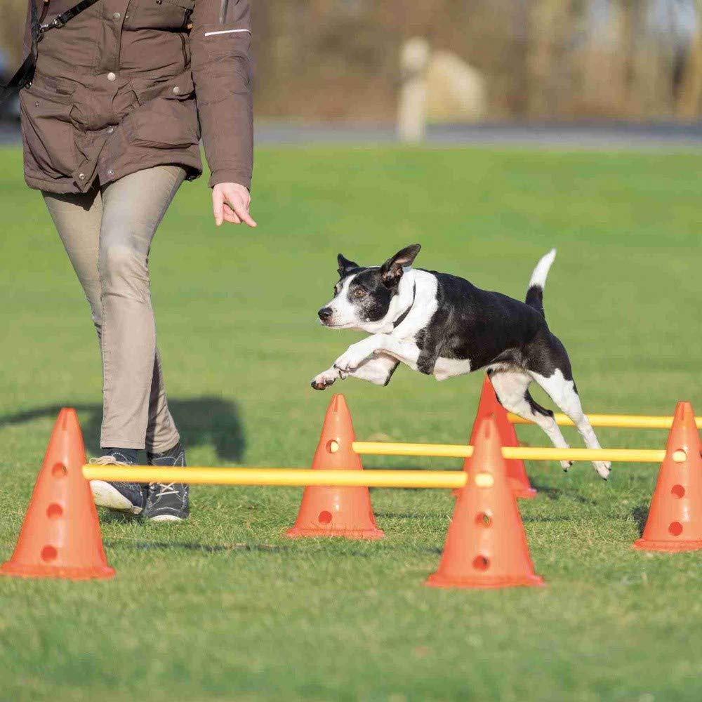 set 3 pcs. Dog Activity Obstacles