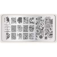 Jojckmen Beauty Nail Stencils Nails Art Stamp Templates Plates for Gel Nail Polish Manicure Image Plate