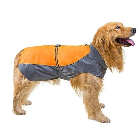 TLLW - Disfraz de Perro Grande para Perro con diseño de Perro ...