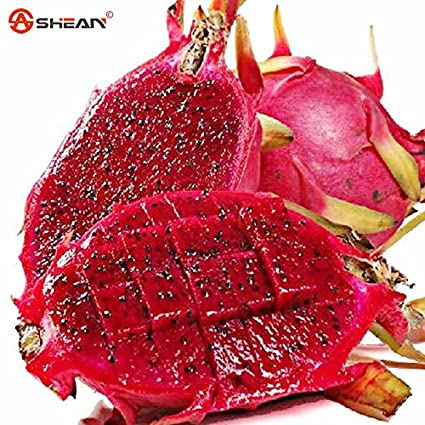 50 Pcs Seeds Rare Red Heart Pitaya Plants Bonsai Tree Dragon Fruits Decoration