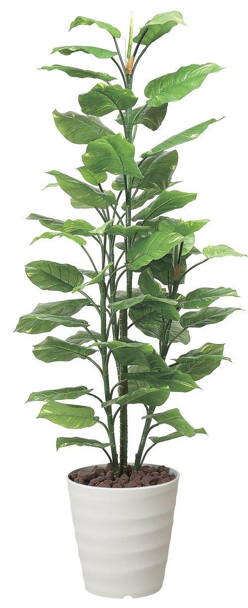 tree-h/ 造花 光触媒 観葉植物 フレッシュポトス 180cm B00RNVWPVQ   高さ:180cm