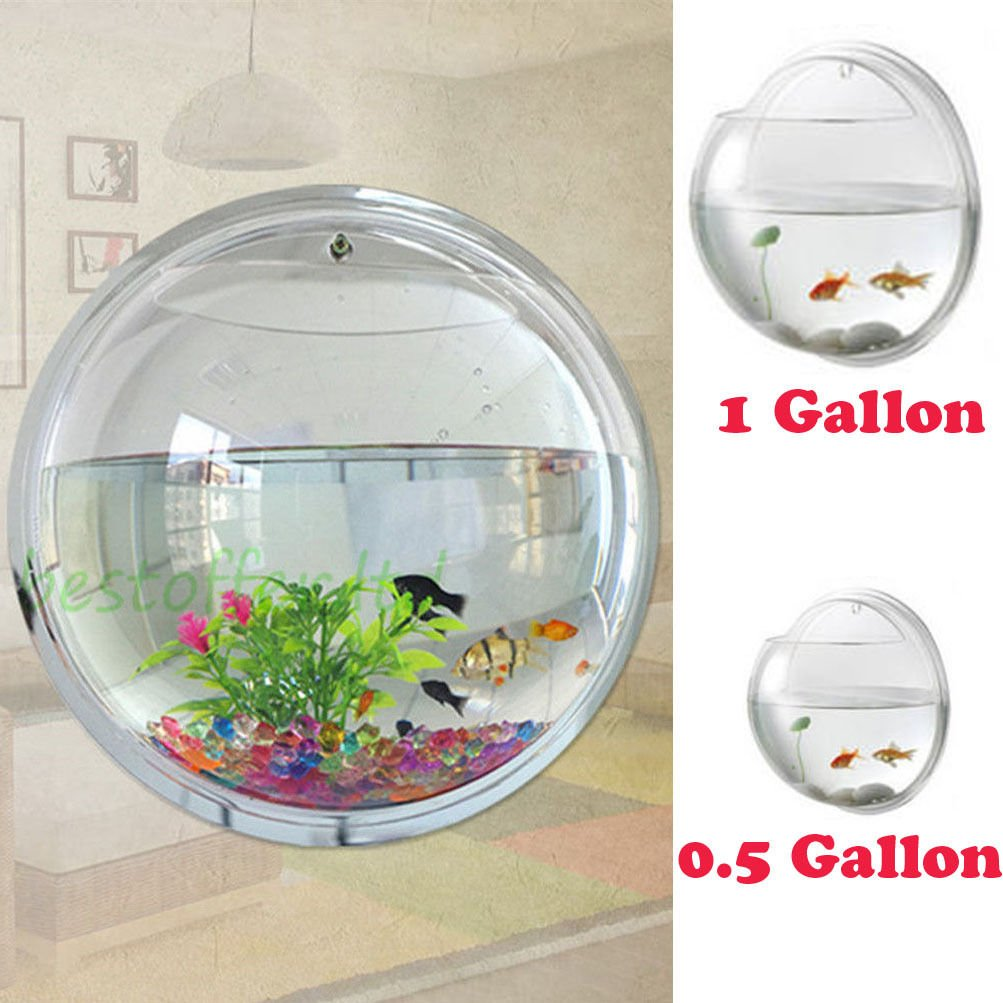 Fish Bowl Wall Mount Betta Tank Aquarium Round Hanging 1 Gallon Bubble Acrylic/ M by Unknown