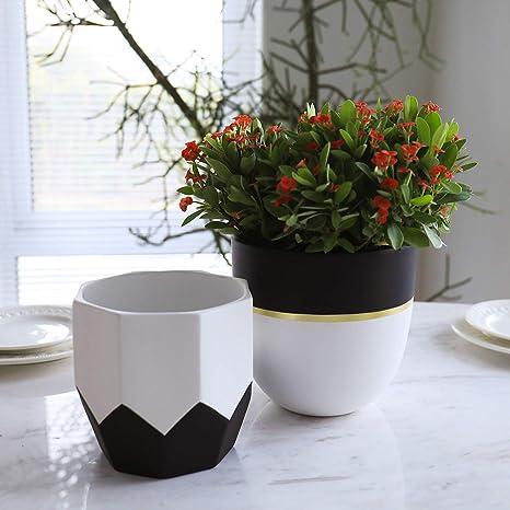 Macetas De Cerámica Para Interiores 6 3 5 Pulgadas Moderno Blanco Geométrico Octágono Y Cactus Orquídeas Redondas Macetas Para Decoración Del Hogar Acabado Mate Kitchen Dining