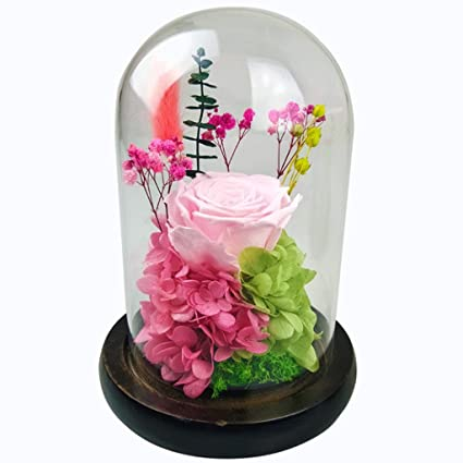 Amazon Com Hongyan Valentine S Day Rose Gift Eternal Flower Glass