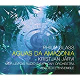 Glass: Aguas da Amazonia