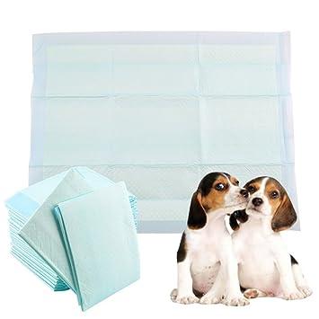 Binghotfireuk 50 Pañales antibacterianos para Entrenamiento de orina de Perro, Super absorbentes, 60 x