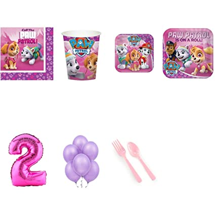 Amazon Paw Patrol Pink 2nd Birthday Supplies Party Pack For 24 Toys Games