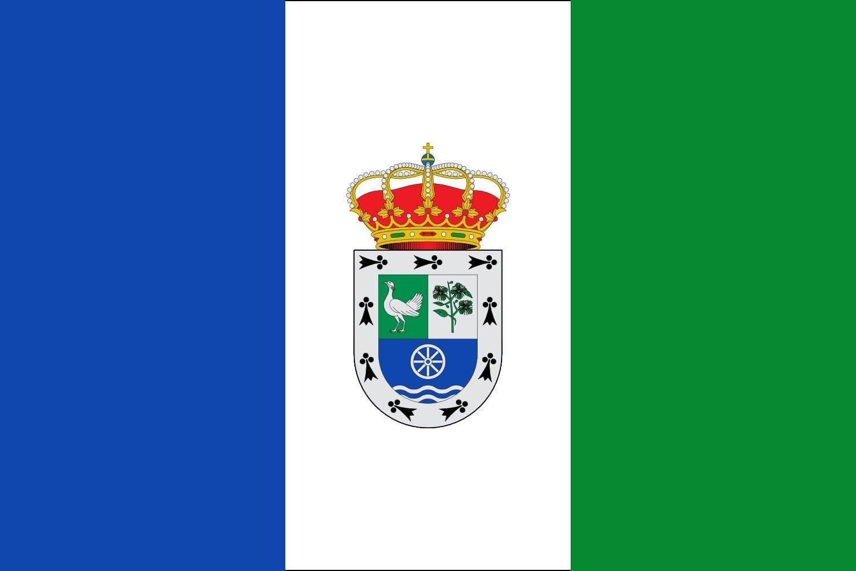 magFlags Bandera Large Valdepolo, León, España | Bandera Paisaje | 1.35m² | 90x150cm: Amazon.es: Jardín