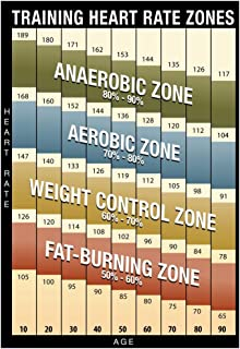 Amazon ten second heart rate 24 x 36 laminated chart training heart rate zones chart modern poster 13 x 19in sciox Image collections