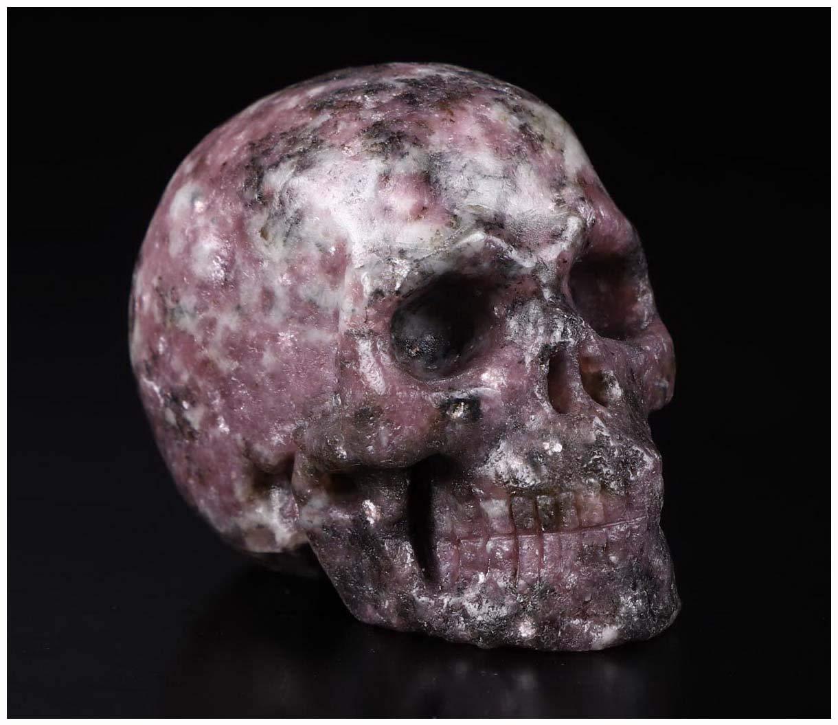 "Skullis 2.0"" Lepidolite Crystal Skull, Hand Carved Gemstone Fine Art Sculpture, Reiki Healing Stone Statue.2"