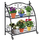DOEWORKS 2 Tier Metal Plant Stand Storage Rack Shelf Pot Holder for Indoor Outdoor Use, Black