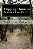 Flipping Domain Names For Profit