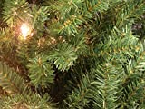 By Darice 9' x 8' Huge Pre-Lit Green Pine Artificial Christmas Archway Decoration - Clear Lights