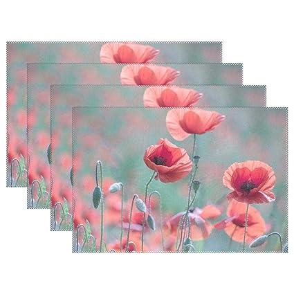 Amazon Poppy Klatschmohn Poppy Flower Red Blossom Bloom