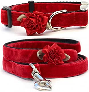 "product image for Diva-Dog 'Mistletoe Holly Red' Custom Small Dog 5/8"" Wide Velvet Dog Collar with Plain or Engraved Buckle, Matching Leash Available - Teacup, XS/S"