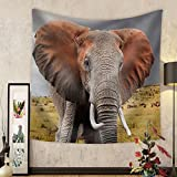 Gzhihine Custom tapestry Elephant in National Park of Kenya Africa - Fabric Wall Tapestry Home Decor