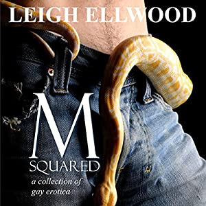 M-Squared: A Collection of Gay Erotica Audiobook