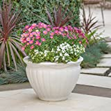 Great Deal Furniture Nicholson Outdoor Antique White Finished Cast Stone Planter
