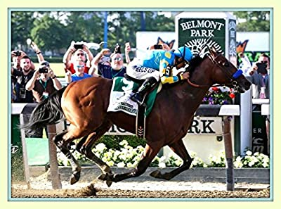 Spectacular Flying for the Triple Crown American Pharoah Wins the Triple Crown At Belmont 2015 with All 4 Hooves Off the Ground 11x14 Double Matted Large 8x12 Photo Print