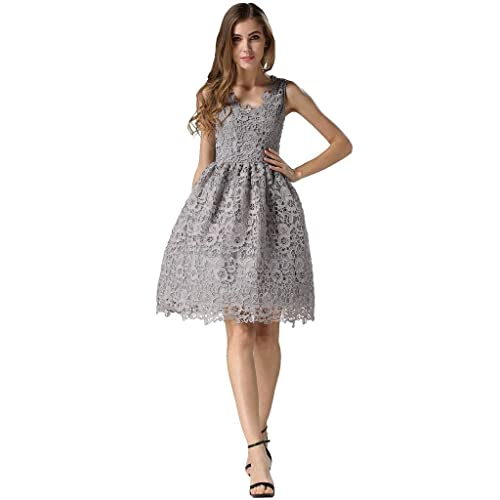 Buenos Ninos Womens Sleeveless Fit and Flare V-Neck Lace Evening Gown Dress