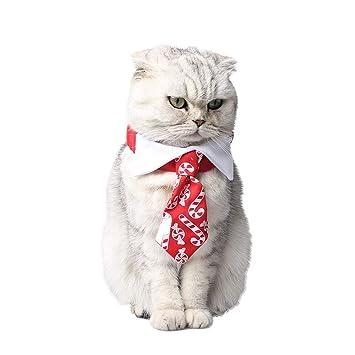 WEATLY Collar del Gato del Perro Corbata Collier Charla Dulces de ...