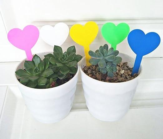 Whthteey - Etiqueta de plástico para plantas, diseño de corazón ...