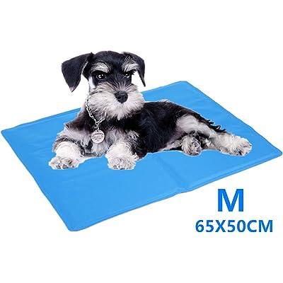 Cadosoigh Alfombra de Refrigeración Animales Nevera y Manta para Perro Fresco Cojín Azul Nevera Techo Camas de Suelo Couch Zwinger Auto(65 * 50 CM)