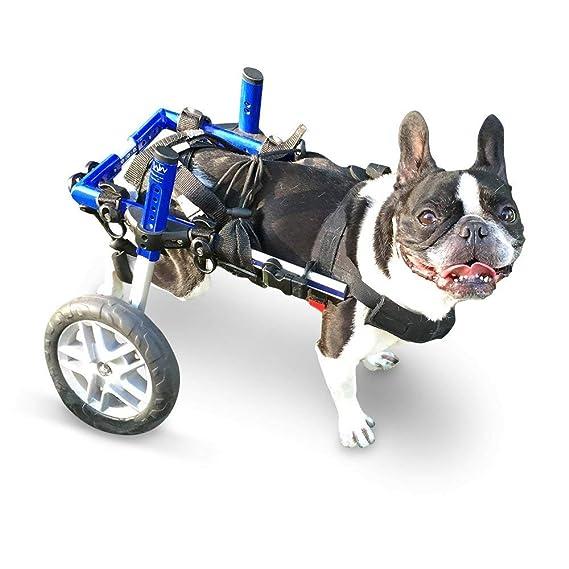 Ortocanis Silla de Ruedas para Perros Entre 4 y 11kg: Amazon.es: Productos para mascotas