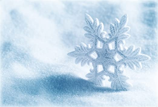 AOFOTO 6x6ft Beautiful Snowflake Backdrop Mother/'s Day Photography Background Falling Snow Winter Scenery Photo Shoot Studio Props Vinyl Wallpaper Girl Kid Baby Mom Newborn Artistic Portrait
