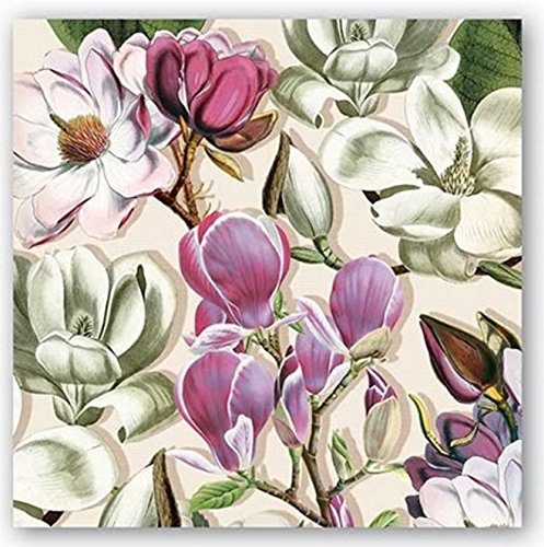 (Michel Design Works 20-Count 3-Ply Paper Cocktail Napkins, Magnolia)
