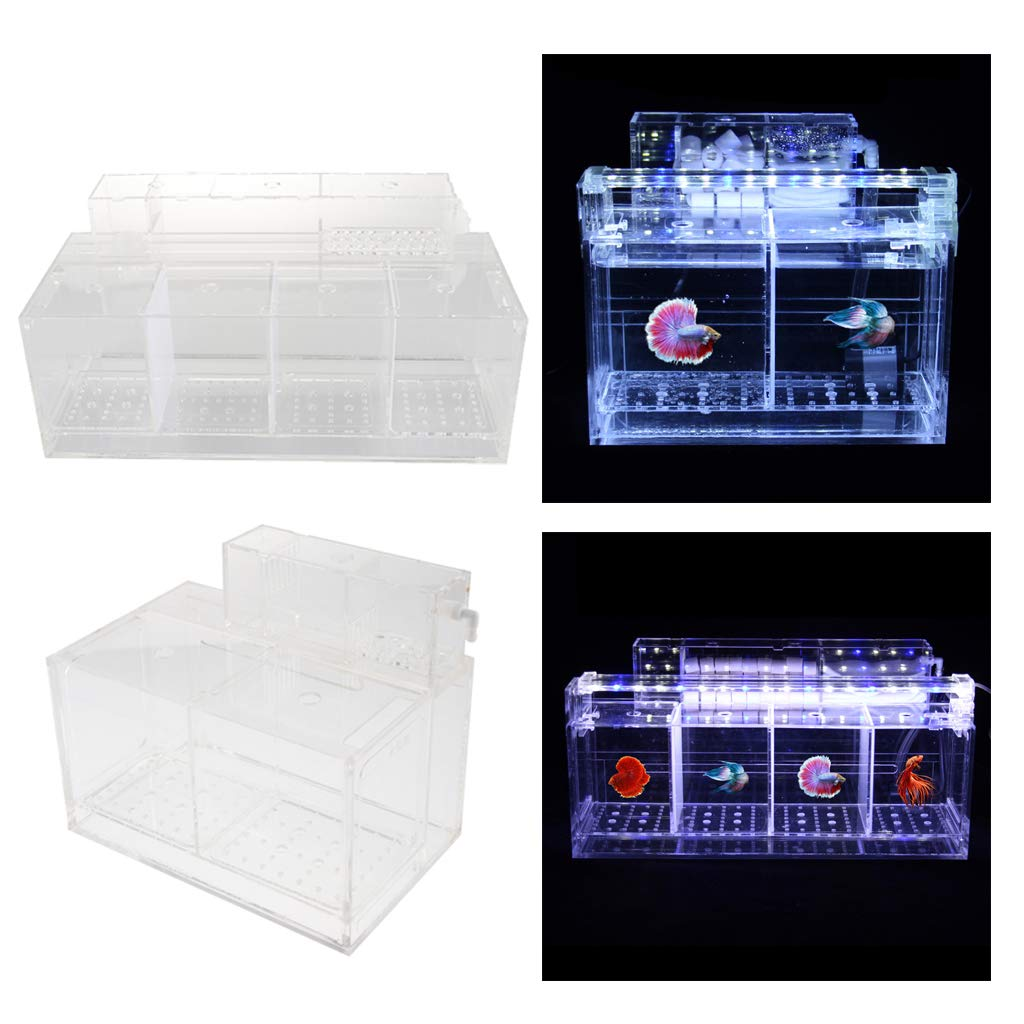 Kesoto Aquarium Hatchery Fish Breeding Box Tank Breeder Multi Grid Isolation Box - 2 Grid by Kesoto (Image #7)