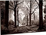 God Refreshes My Soul Black and White Wooded Path 24 x 36 Wood Wall Art Sign Plaque