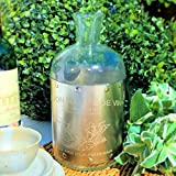 """French Style Silver Clad Carafe Bottle Vase For Flowers,""""Favon Maitre De Vin"""", Glass and Metal, 10 1/4 Inches, By Whole House Worlds"""