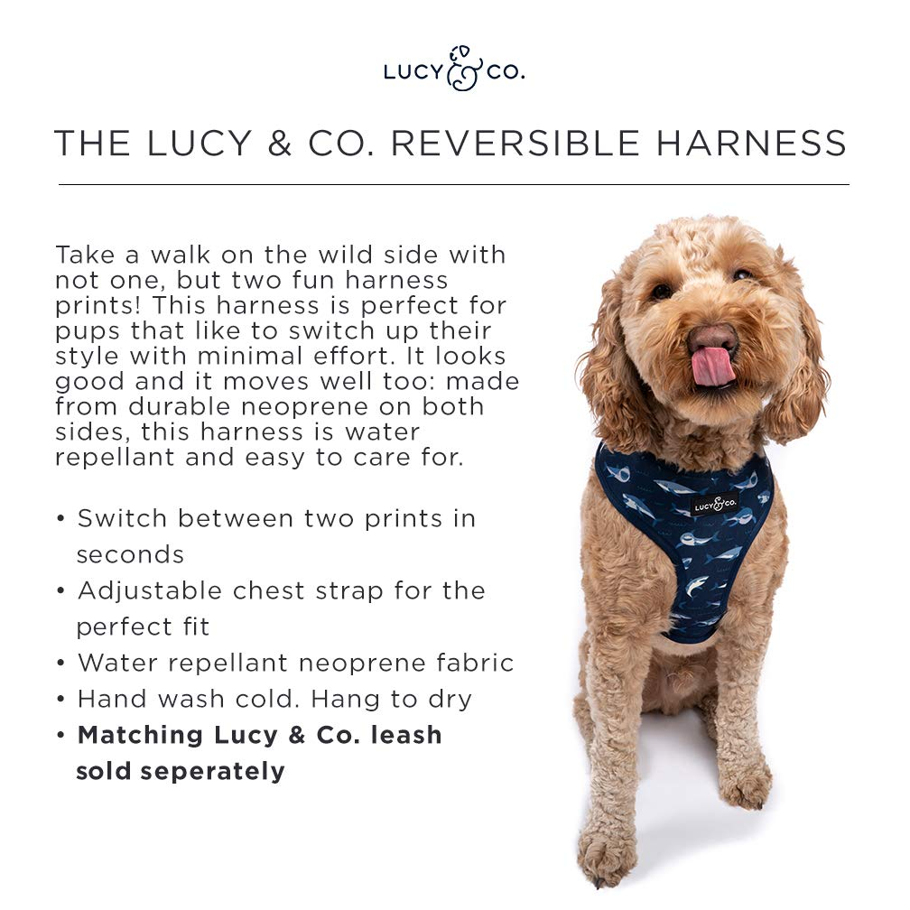 Amazon.com: Lucy & Co. Arnés reversible para perro, arnés ...