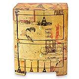 NOVICA Artisan Crafted Wood Decoupage Jewelry Box, Multicolor, Carlota's Secret'