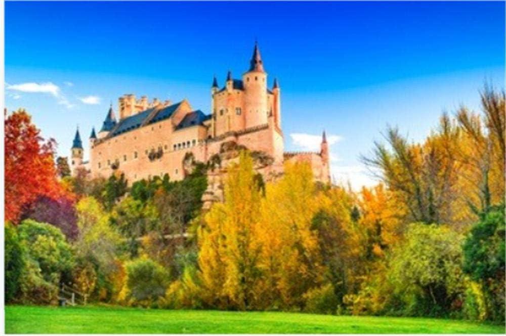 Puzzle De 1000 Piezas Segovia España. Alcázar De Segovia Construido sobre Una Roca Rocosa Construida En 1120. Castilla Y León Rompecabezas: Amazon.es: Hogar