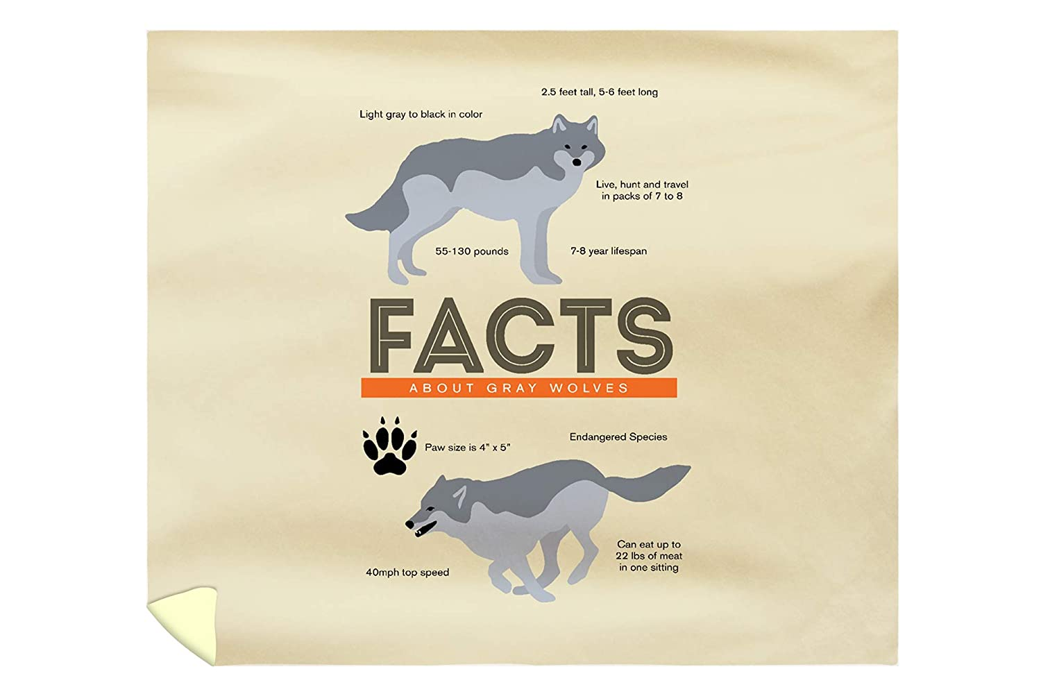 Amazon Lantern Press Facts About Gray Wolves 88x104 King Microfiber Duvet Cover Home Kitchen
