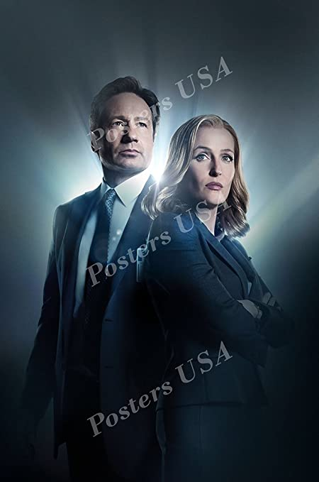 """X-Files The Poster 16/""""x24/"""""""
